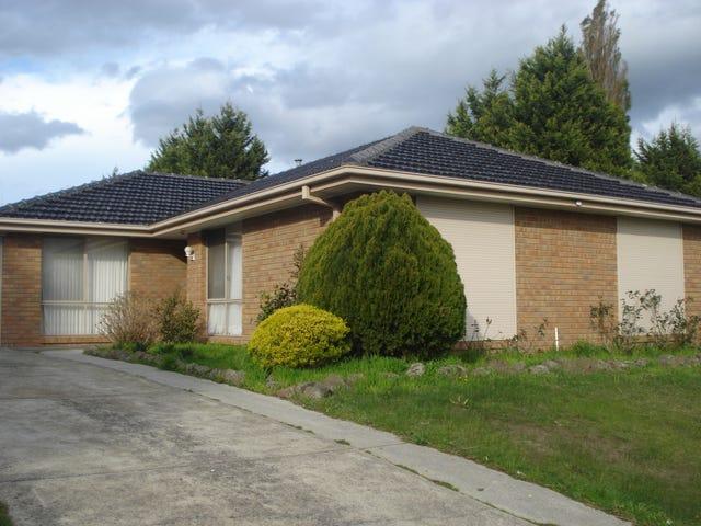 14 Cheshunt Drive, Hallam, Vic 3803