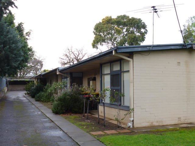 3/56 Queen Street, Norwood, SA 5067