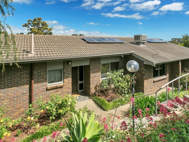 16 Atlas Court, Modbury North, SA 5092