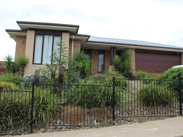 16 Wellington Street, Mernda, Vic 3754