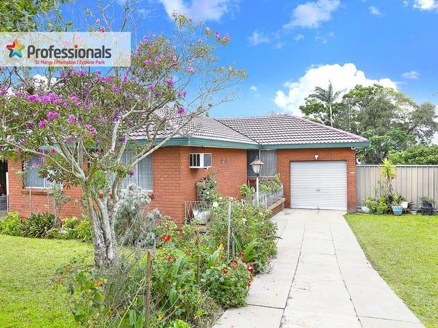 13 Bass Street, Colyton, NSW 2760