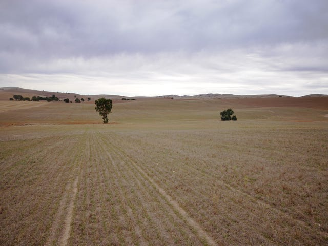 """Harveys"" Pattersons Road, Gulnare, SA 5471"