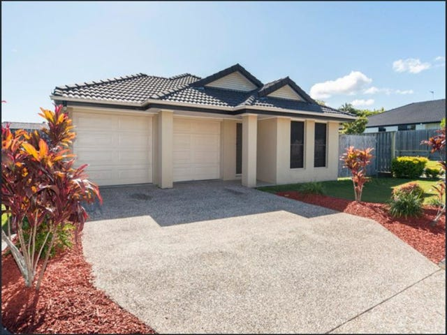 19 Gerard Street, Pacific Pines, Qld 4211