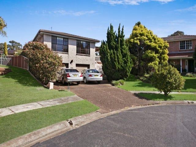 19 Viminaria Place, Warabrook, NSW 2304