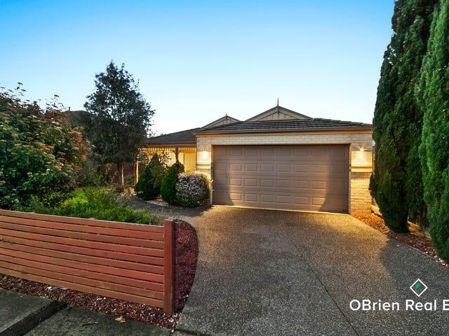 34 Golden Grove, Narre Warren South, Vic 3805