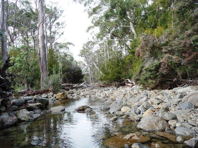 80 Top Road, Blackwood Creek, Tas 7301