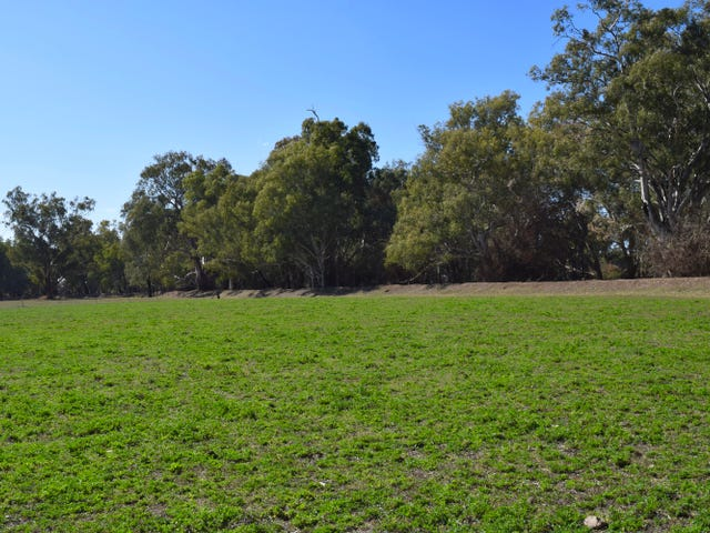 43 Wilmar Lane - Old Grudgery, Forbes, NSW 2871
