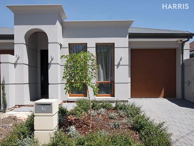 1a Campbell Road, Parkside, SA 5063