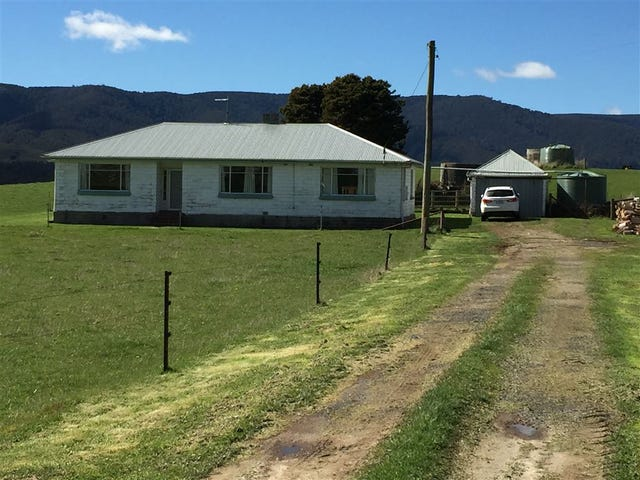 283 New River Road, Ringarooma, Tas 7263