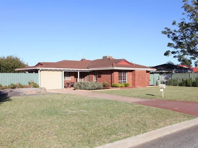 3 Coralgum Court, Morley, WA 6062