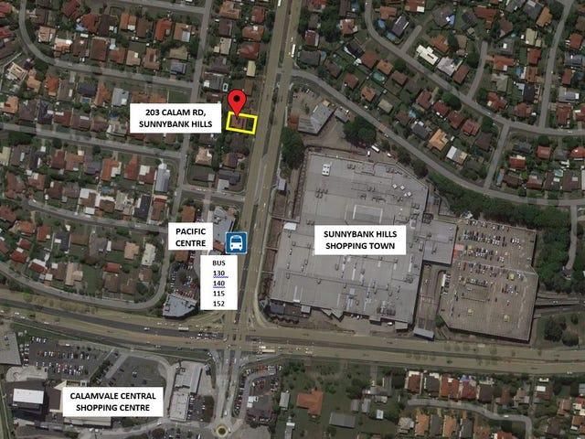 203 Calam Road, Sunnybank Hills, Qld 4109