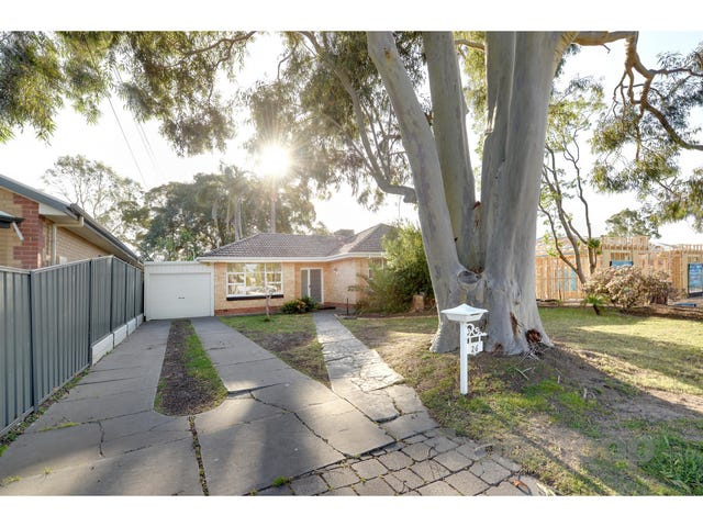 26 Edmund Avenue, Paradise, SA 5075