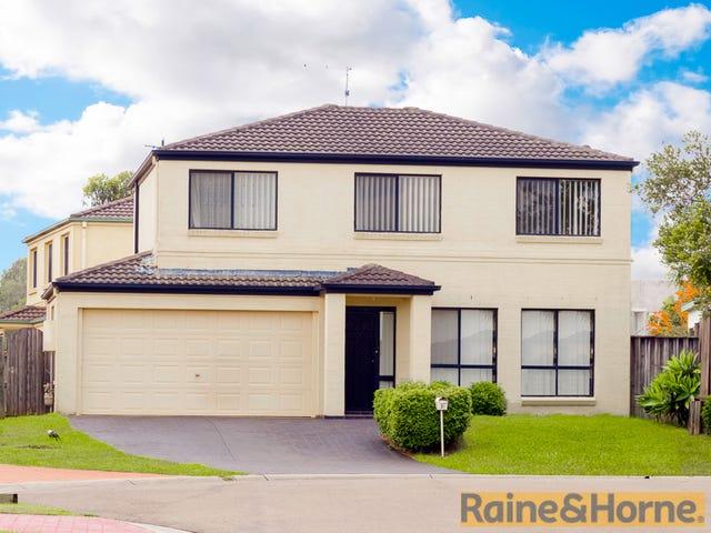 25 Yellowgum Avenue, Rouse Hill, NSW 2155