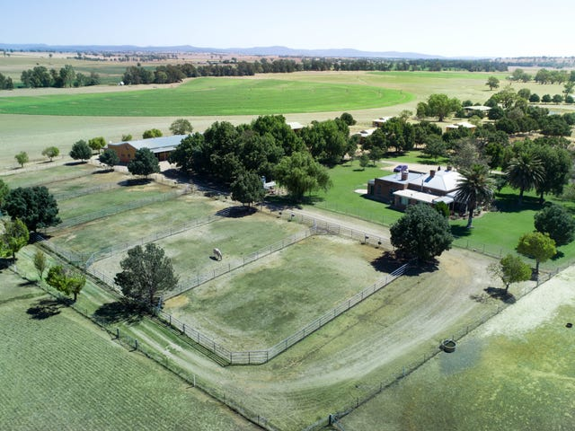 'Springdale Stud', Fish Fossil Drive, Canowindra, NSW 2804