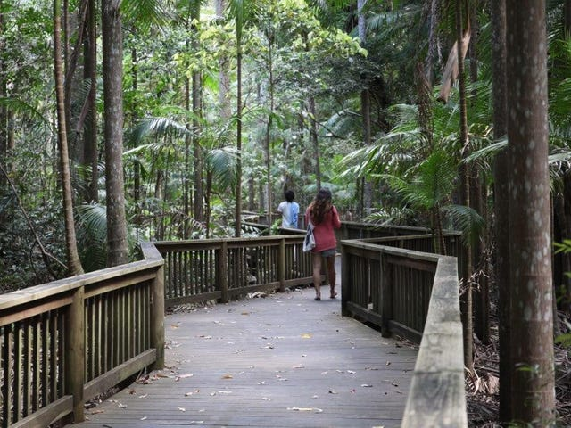 12 Forest Rise Court, Buderim, Qld 4556