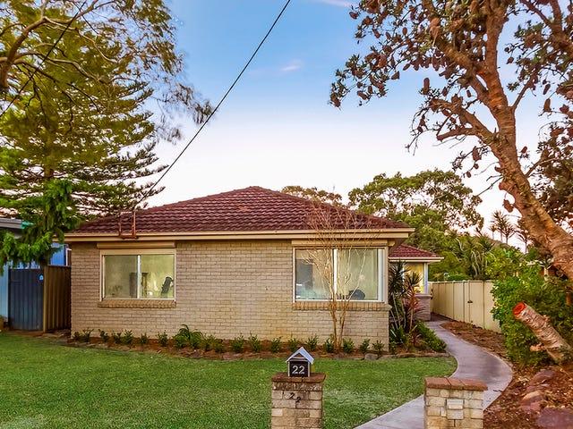 22 Wentworth Avenue, Woy Woy, NSW 2256