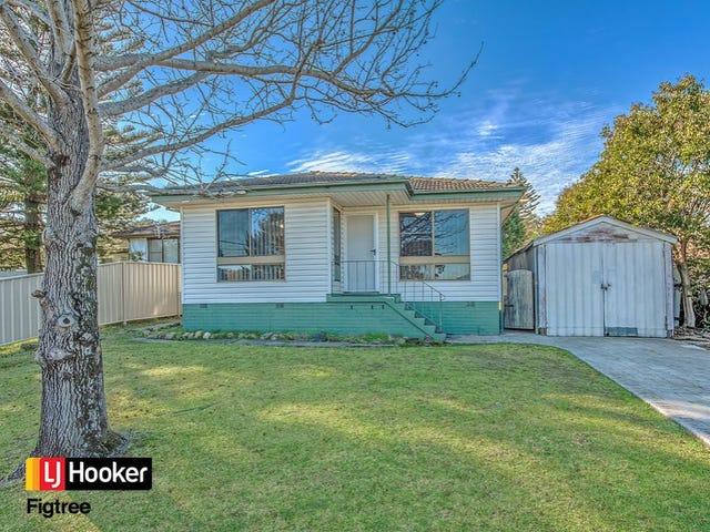 1 Berkeley Lane, Berkeley, NSW 2506