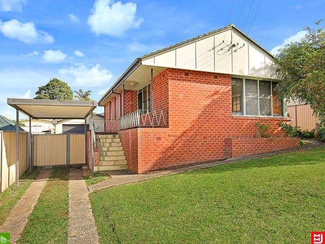 17  Lavis Drive, Mount Warrigal, NSW 2528