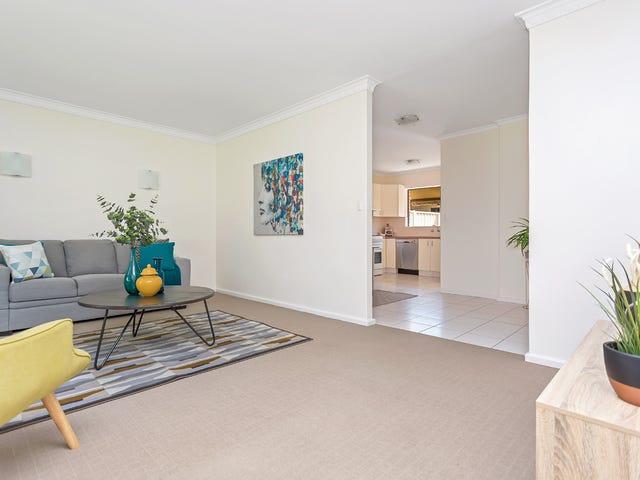 10B Ronald Terrace, Glenelg North, SA 5045