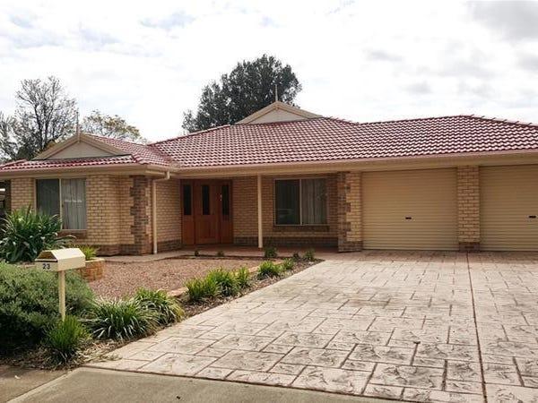 23 Coolah Terrace, Marion, SA 5043
