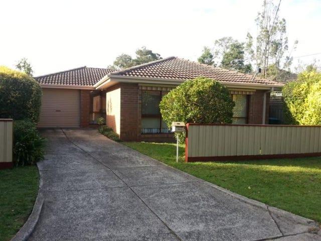74 A Bedford Road, Ringwood, Vic 3134
