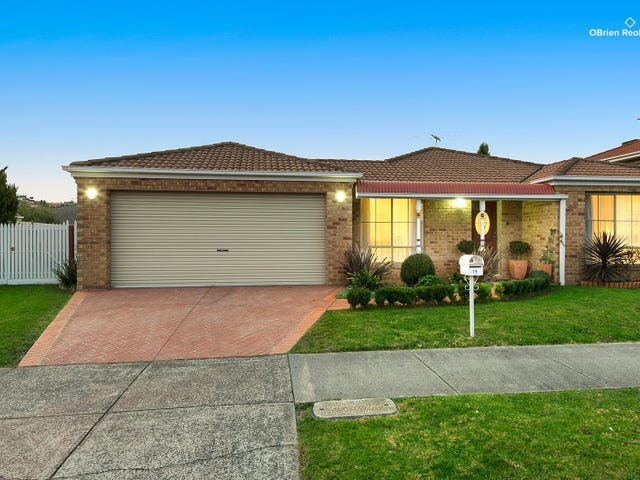 75 David Collins Drive, Endeavour Hills, Vic 3802