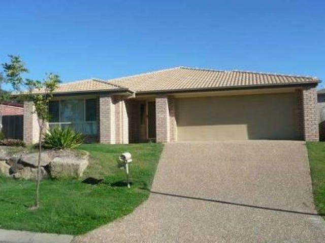 42 Pecan Drive, Upper Coomera, Qld 4209