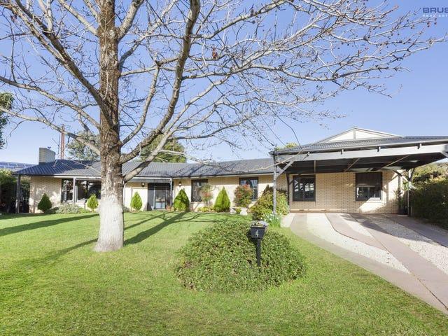4 Dalwood Court, Rosslyn Park, SA 5072