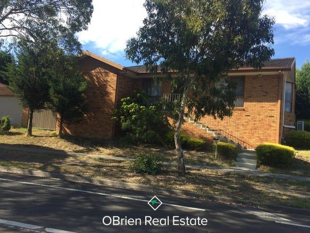 110 Chalcot Drive, Endeavour Hills, Vic 3802