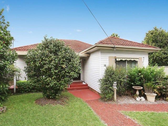 12 Dudley Street, Rydalmere, NSW 2116