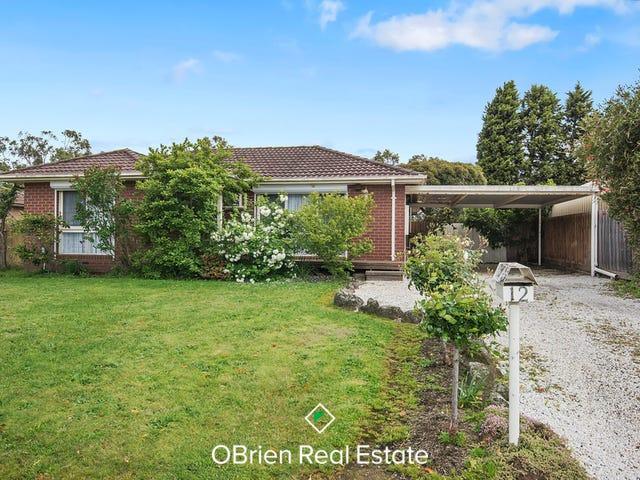 12 Dealbata Avenue, Endeavour Hills, Vic 3802