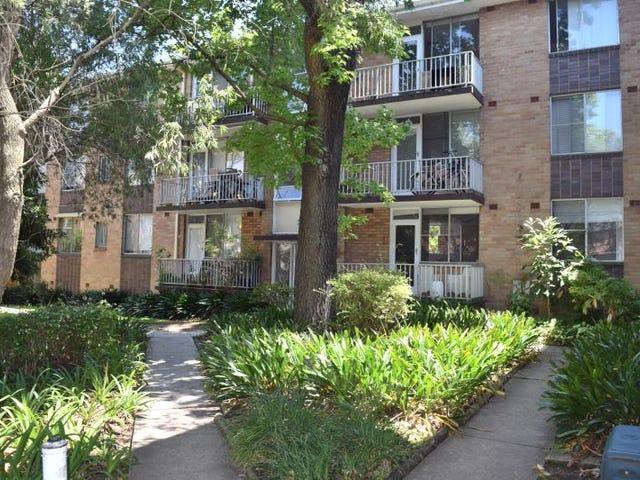 44/44-50 Ewart Street, Marrickville, NSW 2204