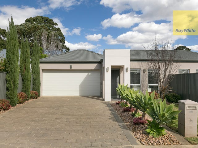 14 Stanley Street, Glengowrie, SA 5044