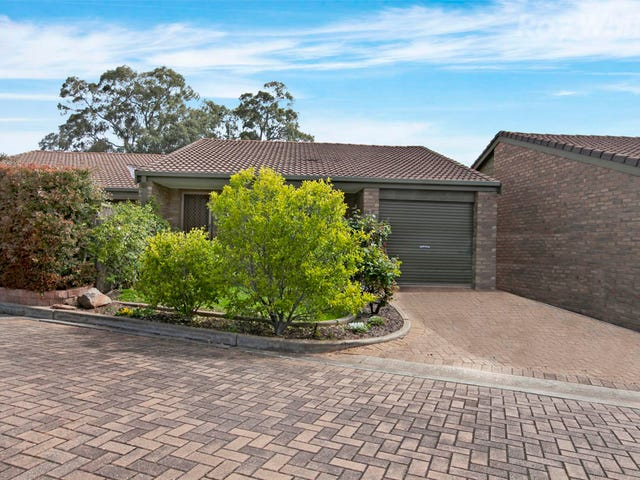 3/718 Lower North East Road, Paradise, SA 5075