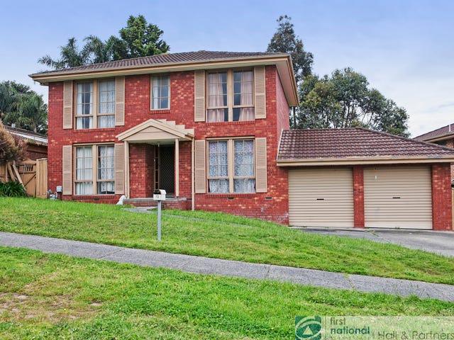 13 Denton Drive, Endeavour Hills, Vic 3802