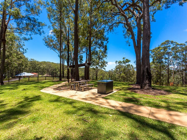 Bluebird Lane, Reedy Creek, Qld 4227