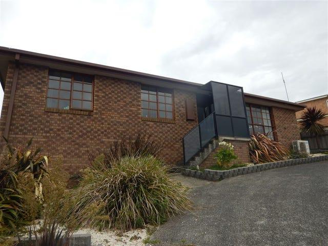 1 Cooney Court, Downlands, Tas 7320