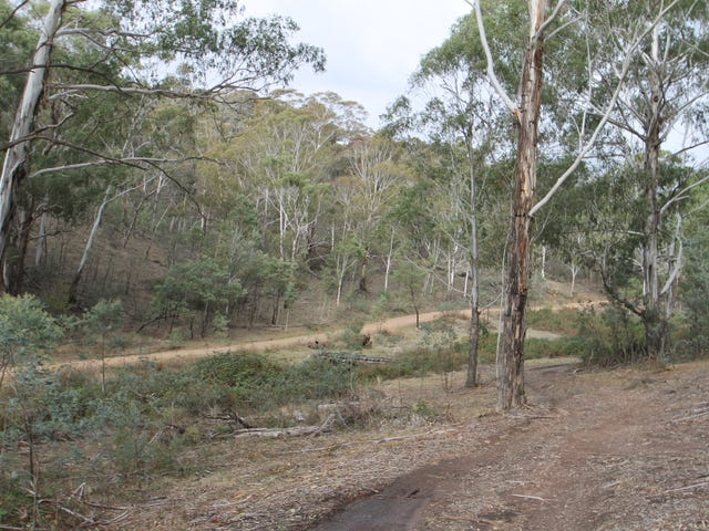 200, 704 Green Gully Road, Mudgee, NSW 2850