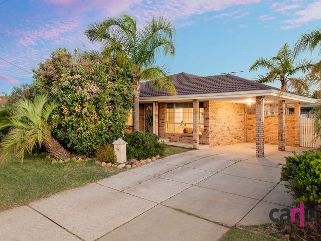 12 Torenia Way, Yangebup, WA 6164