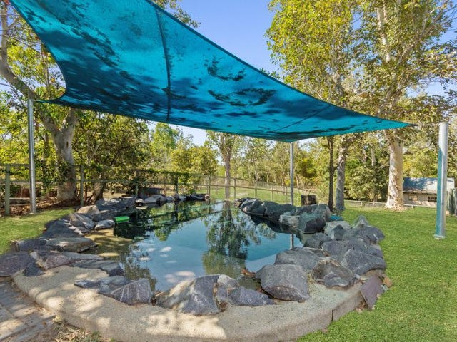 446 Forestry Road, Bluewater Park, Qld 4818
