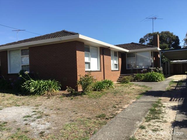 14 Elliott Avenue, Highton, Vic 3216