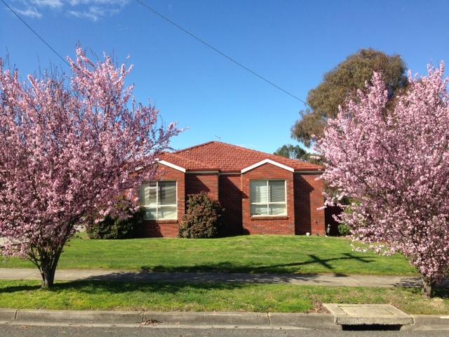 5/211 Kline Street, Ballarat East, Vic 3350