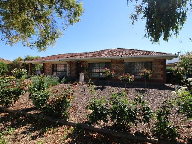 12 Beames Road, Lyrup, SA 5343