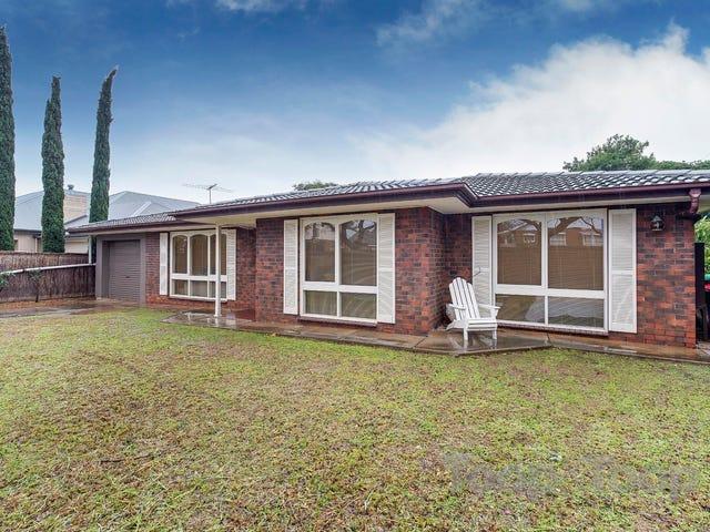 27B Bevington Road, Glenunga, SA 5064