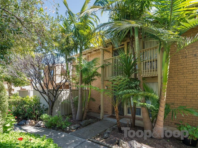 11/74-78 Ward Street, North Adelaide, SA 5006