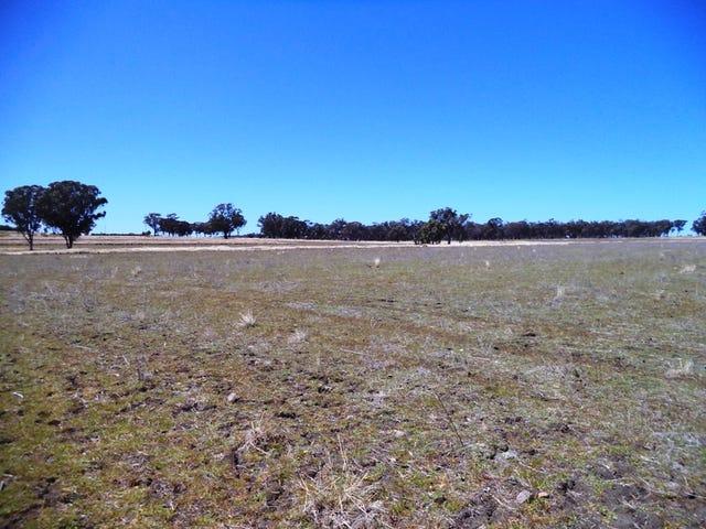 4053 Bingara Rd, Delungra, NSW 2403