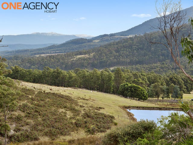 64 Fletchers Road, Judbury, Tas 7109