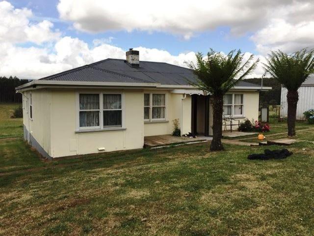 199 Pinega Rd, Ringarooma, Tas 7263