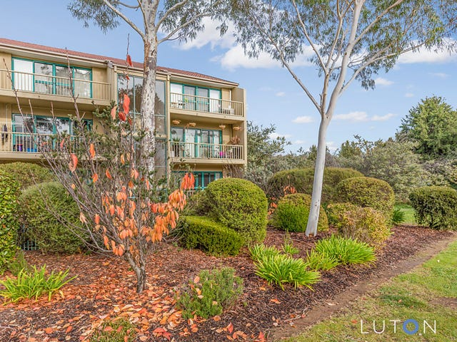 41/53 McMillan Crescent, Griffith, ACT 2603