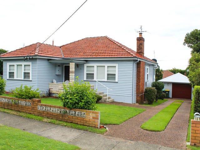 107 Georgetown Road, Waratah, NSW 2298